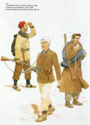 Armée Libération Nationale.png